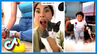 Cute Animal Moments and Funny Videos 2020 | Stop Being So Cute TikTok Compilation