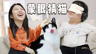 [Cat Live] A couple blindfold their eyes to play a game of guessing cats' names