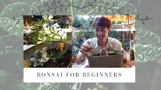 I do bonsai for the first time (from scratch, didn't use a kit) ||盆栽 BONSAI FOR BEGINNERS
