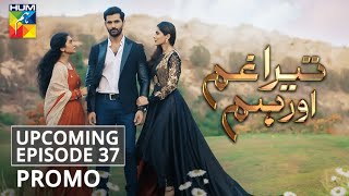 Tera Ghum Aur Hum | Upcoming Episode 37 | Promo | HUM TV | Drama