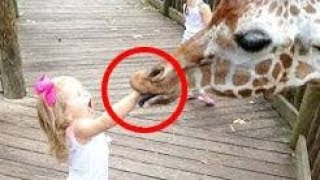 Best of Funny KIDS vs ZOO ANIMALS Compilation Fail Vines