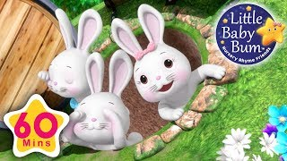Learn with Little Baby Bum | Bunny Hop Hop | Nursery Rhymes for Babies | Songs for Kids
