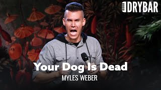 When You Think Your Dog Is Dead. Myles Weber